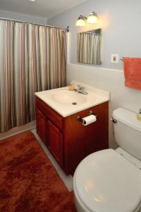3419_barclay_street_MLS_HID574123_ROOMbathroom